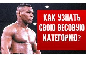 Весовые категории в боксе