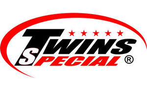 Боксерские перчатки Twins по супер цене