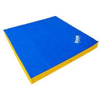 Чехол для мата гимнастического BOXER 100см*100см*10см из ПВХ 0.7мм (1026-01)