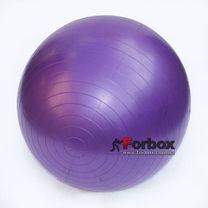 Мяч для фитнеса (фитбол) гладкий сатин 65см Zelart (FI-1983-65, фиолетовый)