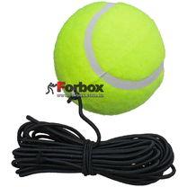 Теннісний мяч на резинці боксерський Fight Ball 838
