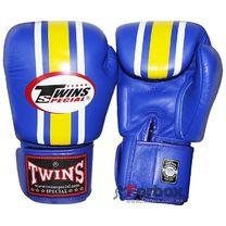 Боксерские перчатки Twins (FBGV-3, кожа синие)